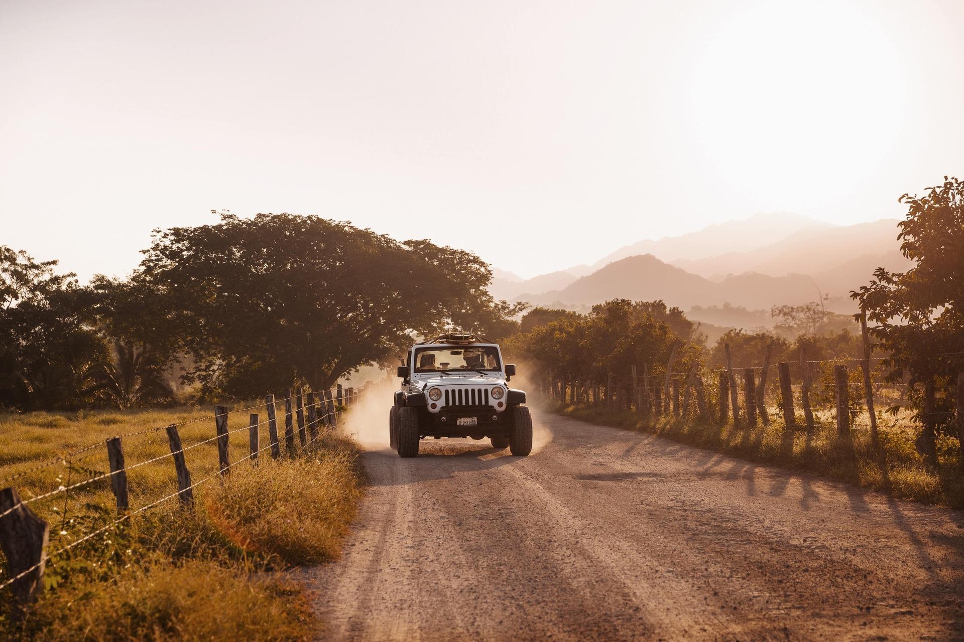 Відчуйте приплив адреналіну, пройшовши денний курс виживання у джунглях: зіплайн, стіну для скелелазіння, канатну дорогу та стежку з перешкодами.
