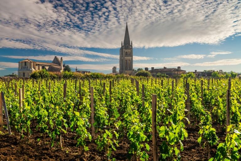 Подорож у Бургундію. Для поціновувачів вина