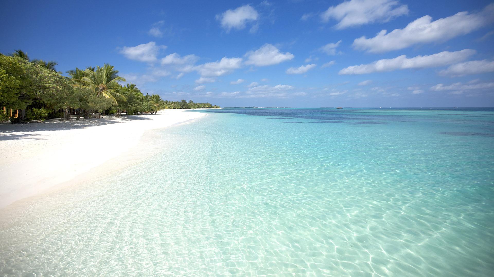 4 километра пляжей вокруг курорта и большая лагуна с разноцветными рыбками