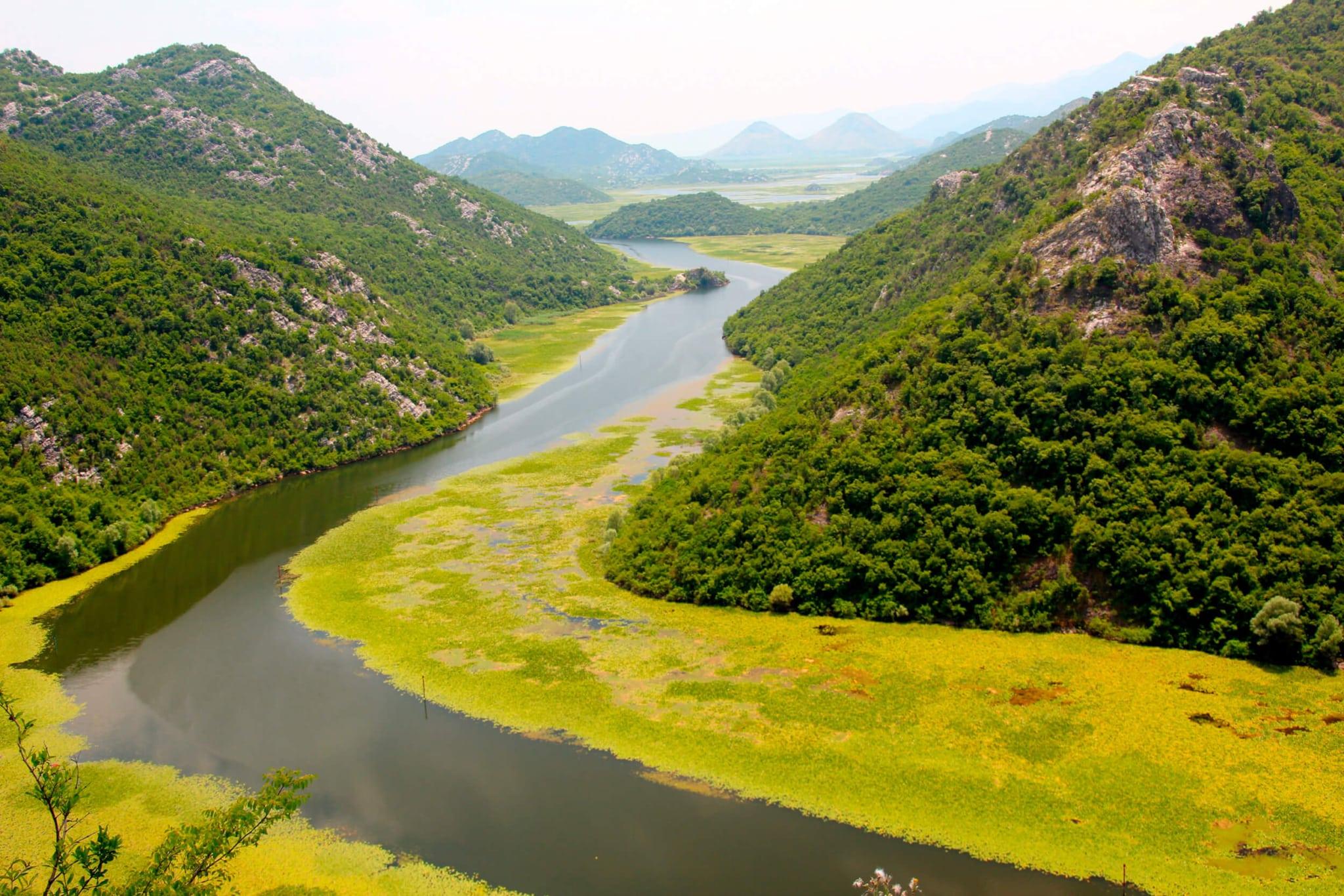 Річка Тара