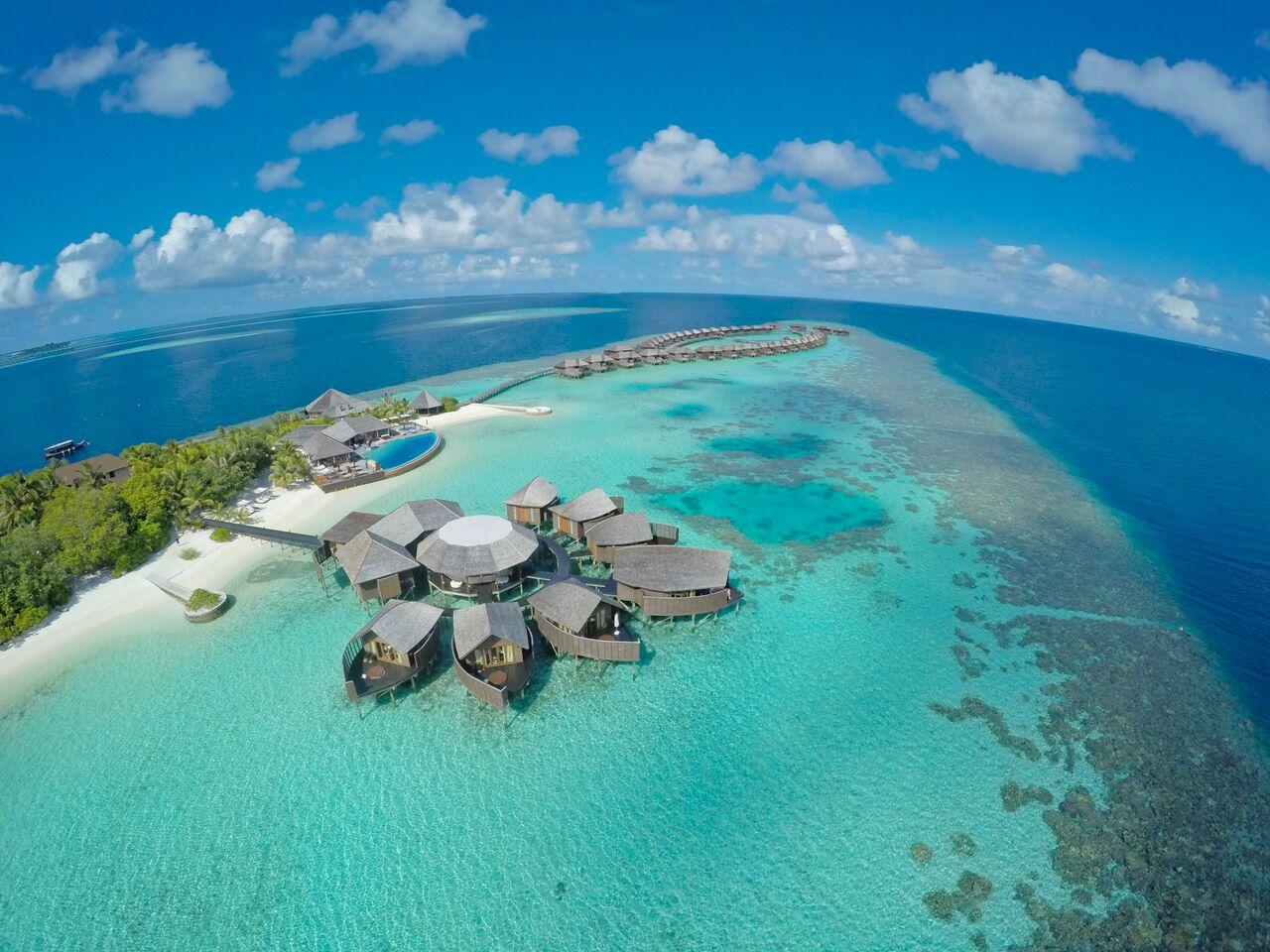 Живой коралловый риф расположен непосредственно вокруг острова, а снаряжение для снорклинга вам предоставят бесплатно!