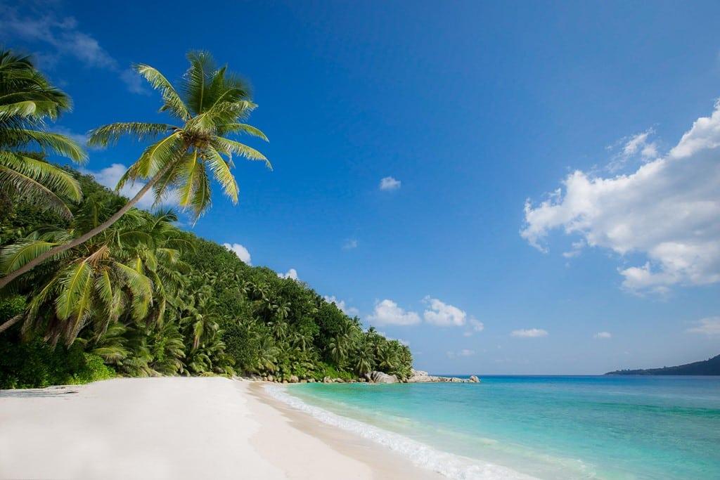 На вас чекає відпочинок на казковому приватному острові Фелісіте, серед бірюзової гладі океану, в стороні від зони циклонів.