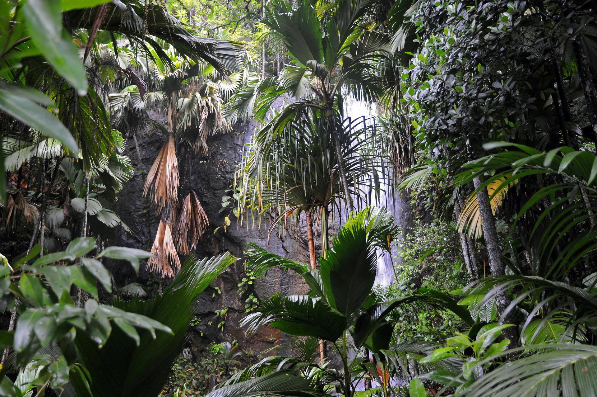 Рядом с отелем расположен природный парк Валле-де-Мэ, внесенный в список Всемирного наследия ЮНЕСКО
