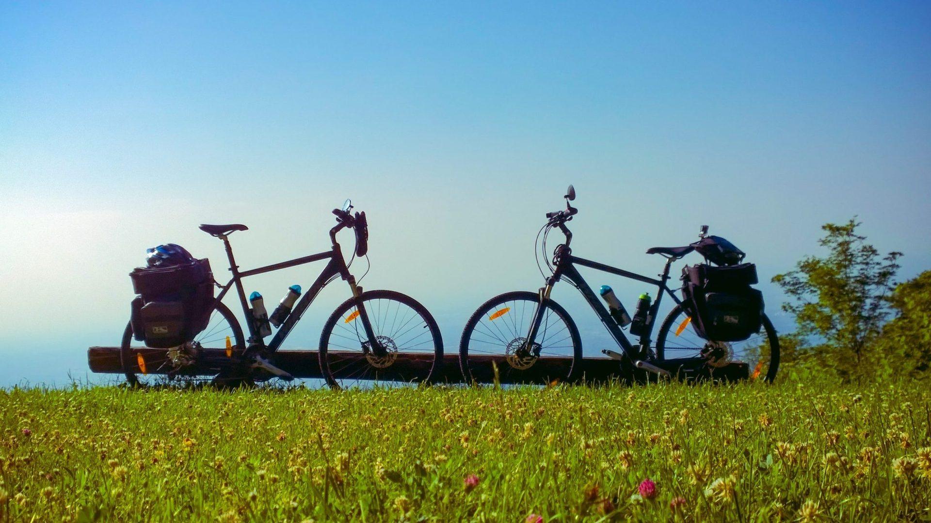 На курорте есть лучший велосипедный центр в Хорватии с тренировочными трассами и курсами, V Sport Point, предлагающий самые привлекательные виды спорта на суше и на море, ежедневную программу Stay Fit, а также отличную ночную жизнь